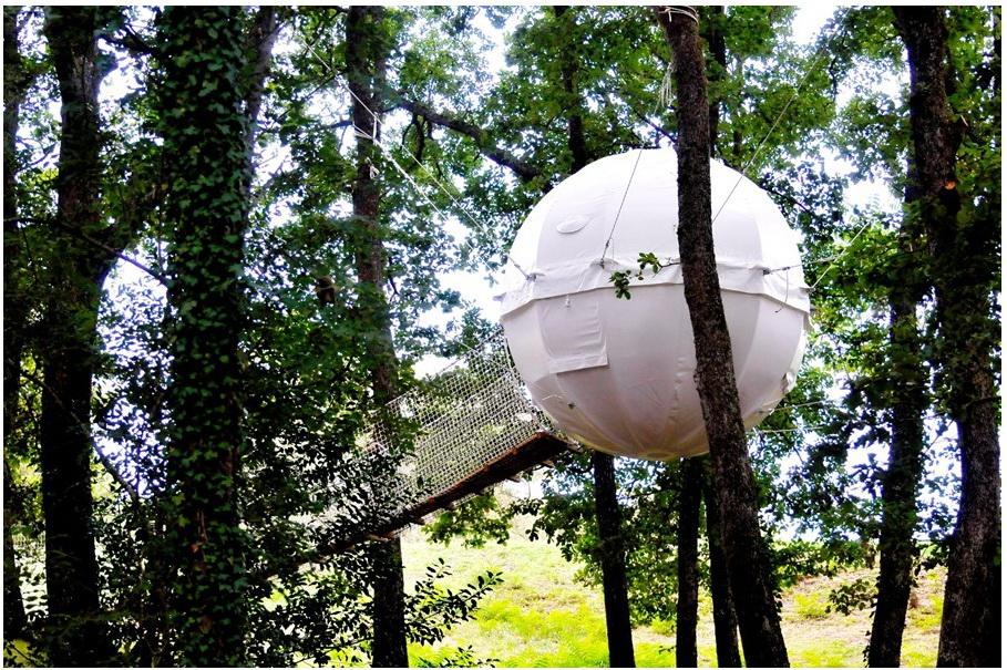Cocoon Tree Village | Fuyez le quotidien, campez dans un cocon