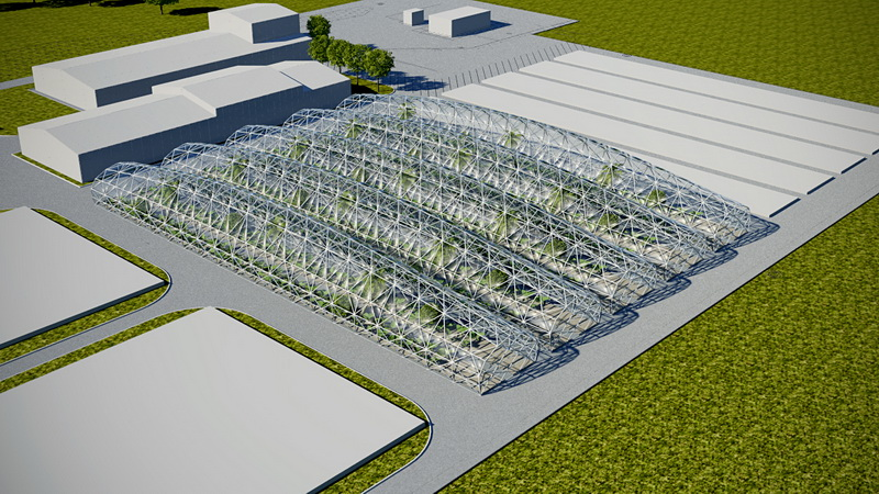 Industrial Greenhouses for Growing Eco Products or Plants Manufacture